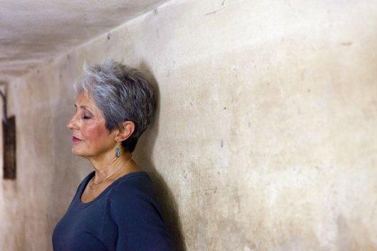 joan_baez_MetropoleHanoi_wall